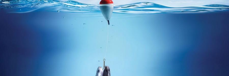 Объявляется прием заявок на участие в областном конкурсе на лучший рыбацкий костюм «Рыба моей мечты»